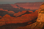 Sunset from Powell Point, along the South Rim of the Grand Canyon, Arizona. .  John offers private photo tours in Grand Canyon National Park and throughout Arizona, Utah and Colorado. Year-round.