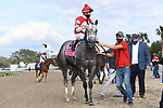 March 20, 2021: Travel Column wins the Fair Grounds Oaks during Louisiana Derby Day at Fair Grounds Race Course in New Orleans, Louisiana. Parker Waters/Eclipse Sportswire/CSM