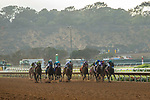 """DEL MAR, CA  JULY 28:  The field of Bing Crosby Stakes (Grade l) Breeders' Cup """"Win and You're In Sprint Division"""" on July 28, 2018 at  Del Mar Thoroughbred Club in Del Mar, CA. (Photo by Casey Phillips/Eclipse Sportswire/Getty Images)"""