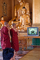 Myanmar, Burma.  Shwedagon Pagoda, Yangon, Rangoon.  Young Monks at Buddha Shrine.