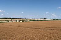 18-7-2021 Farming landscape, Rutland <br /> ©Tim Scrivener Photographer 07850 303986<br />      ....Covering Agriculture In The UK....