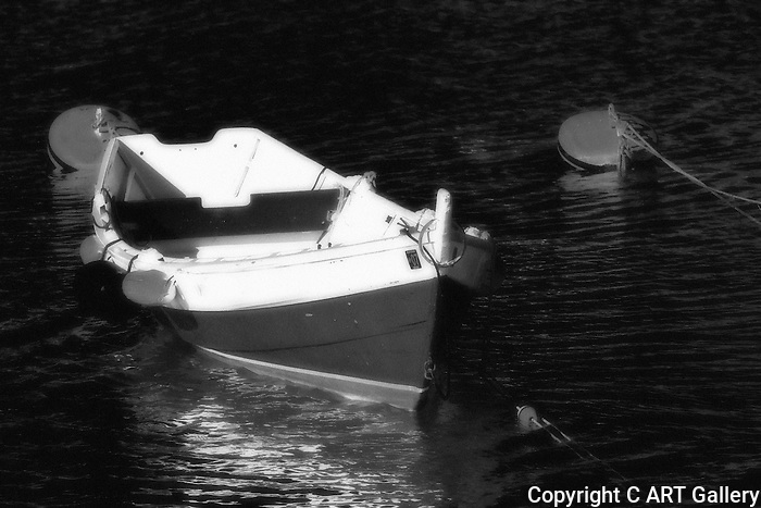 Roaboat, Balboa Island, CA.