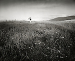 1973 . Jeff & Beth Hurwitz in field- blurred.