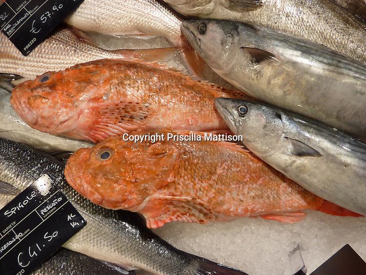 Turin, Italy - February 5, 2012:  Fish glisten in a stall.