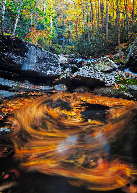 Swirls and Autumn color on Middle Prong of Little River, Tremont