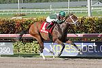 July 12, 2014: Coco's Wildcat (FL) with jockey Eduardo Nunez on board wins the Cassidy Stakes by 5 3/4 lengths at Gulfstream Park in Hallandale Beach FL. Liz Lamont/ESW/CSM