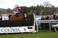Skipping On ridden by Adam Wedge and trained by Laura Morgan jump the last in The Crystal Services Commercial and Domestic Cleaning Chase during Horse Racing at Plumpton Racecourse on 10th February 2020