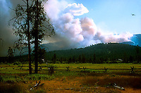 Pastoral view with wildfire in background<br />