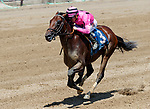 Casa Creed (no. 3) wns Race 2, Aug. 4, 2018 at the Saratoga Race Course, Saratoga Springs, NY.  Ridden by Junior Alvarado and trained by William Mott, Casa Creed finished 1 1/2 lengths in front of Social Paranoia (no. 11).  (Photo credit: Bruce Dudek/Eclipse Sportswire)