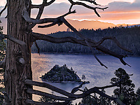 Sunrise over Emerald Bay with dead tree and Fannette Island, Lake Tahoe, California.
