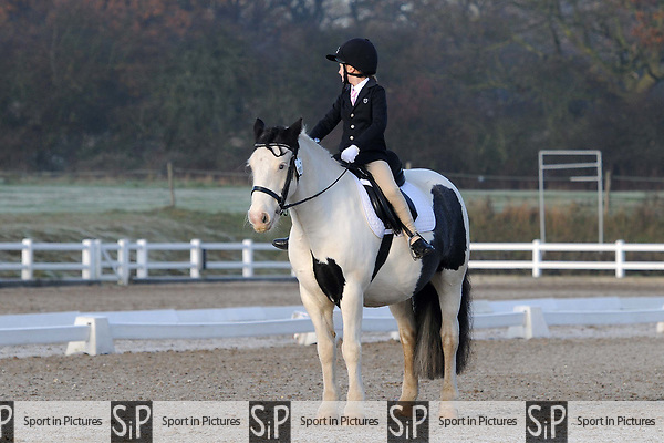 Stapleford Abbotts. United Kingdom. 30 November 2019. Class 1. Unaffiliated dressage. Brook Farm training centre. Stapleford Abbotts. Essex. UK. Credit Ellen Szalai/Sport in Pictures.~ 30/11/2019.  MANDATORY Credit Ellen Szalai/SIP photo agency - NO UNAUTHORISED USE - 07837 394578