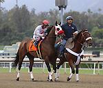 APRIL 12, 2014: Big Macher, ridden by Tyler Baze wins the Grade II Potrero Grande Stakes at Santa Anita Park in Arcadia, CA. Zoe Metz/ESW/CSM