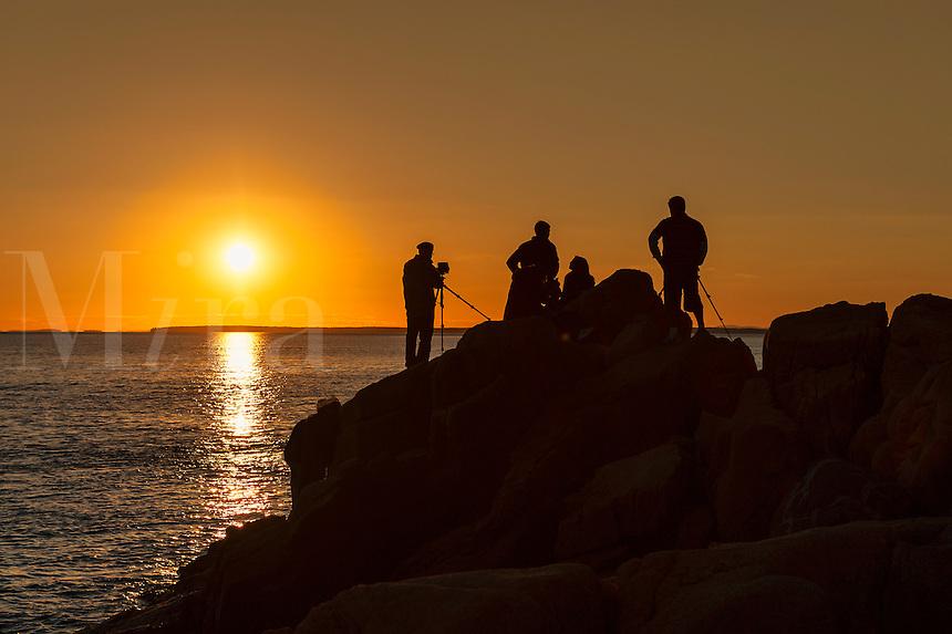 Photographers shooting a coastal sunset, Maine, USA