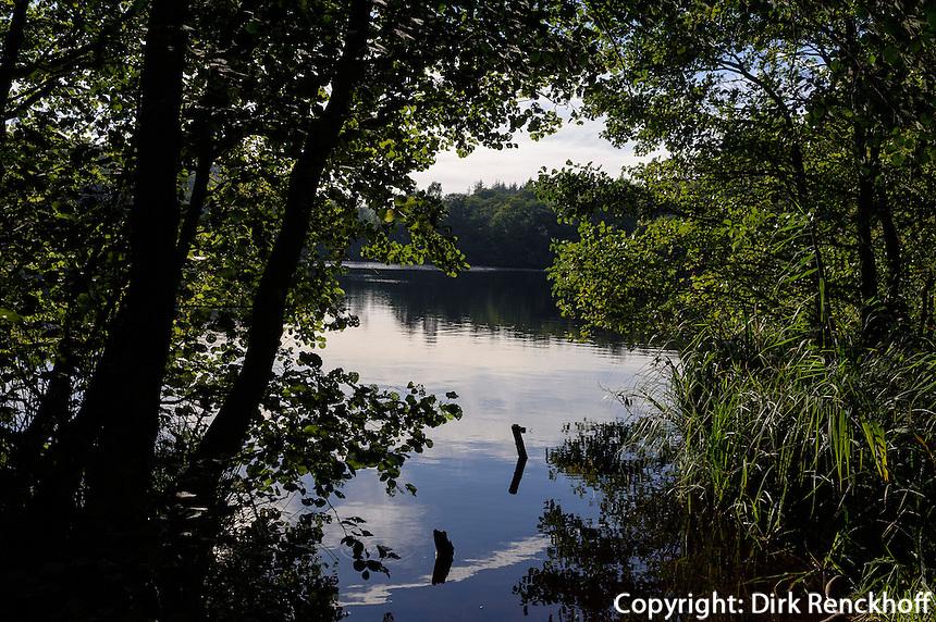 Hertha-See  im Nationalpark Jasmund auf der Insel Rügen, Mecklenburg-Vorpommern, Deutschland