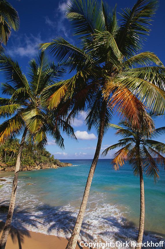 Dominikanische Republik, Bucht bei der Playa Grande Rio San Juan an der Nordküste