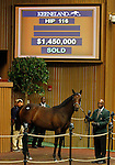 September 14, 2015: Hip 116 War Front - BetterBetterBetter (IRE) filly sells for $1,450,000 consigned by Timber Town.  Candice Chavez/ESW/CSM