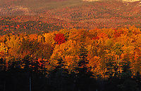 Fall Foliage at the base of Mount Katahdin as seen from Sandy Stream Pond, Baxter State Park, Maine. .. Restrictions