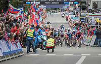 Peter Sagan (SVK/Bora-Hansgrohe) crowns himself World Champion for the 3rd (successive) time by beating on the finish line in a bunch sprint<br /> <br /> Men Elite Road Race<br /> <br /> UCI 2017 Road World Championships - Bergen/Norway