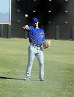 Josh Burgmann - 2020 AIL Cubs (Bill Mitchell)