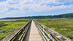 Boardwalk  looks over Theler Wetlands Nature Preserve, on Hood Canal, fiord, Washington, Belfair, Washington.  Trails, hiking, boardwalks and wildlife.