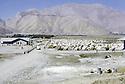 Iran 1974.Camp de réfugiés kurdes à Nelliwan.Iran 1974.Kurdish refugees' camp in Nelliwan