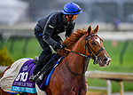 November 1, 2018: Line of Duty (IRE), trained by Charlie Appleby, exercises in preparation for the Breeders' Cup Juvenile Turf at Churchill Downs on November 1, 2018 in Louisville, Kentucky. Michael McInally/Eclipse Sportswire/CSM