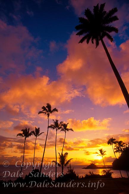 Palm trees at sunset, Hana, Maui, Hawaii, USA.