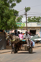 Senegal, Touba.  Horse-drawn Local Transport.