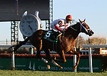 LOUISVILLE, KY -NOV 23: Shining Copper (Cory Lanerie) wins the G3 River City Handicap at Churchill Downs, Louisville, Kentucky. Owner Kenneth L. and Sarah K. Ramsey, trainer Michael Maker. By Aragorn x La Minuta, by Winged Victory. (Photo by Mary M. Meek/Eclipse Sportswire/Getty Images)