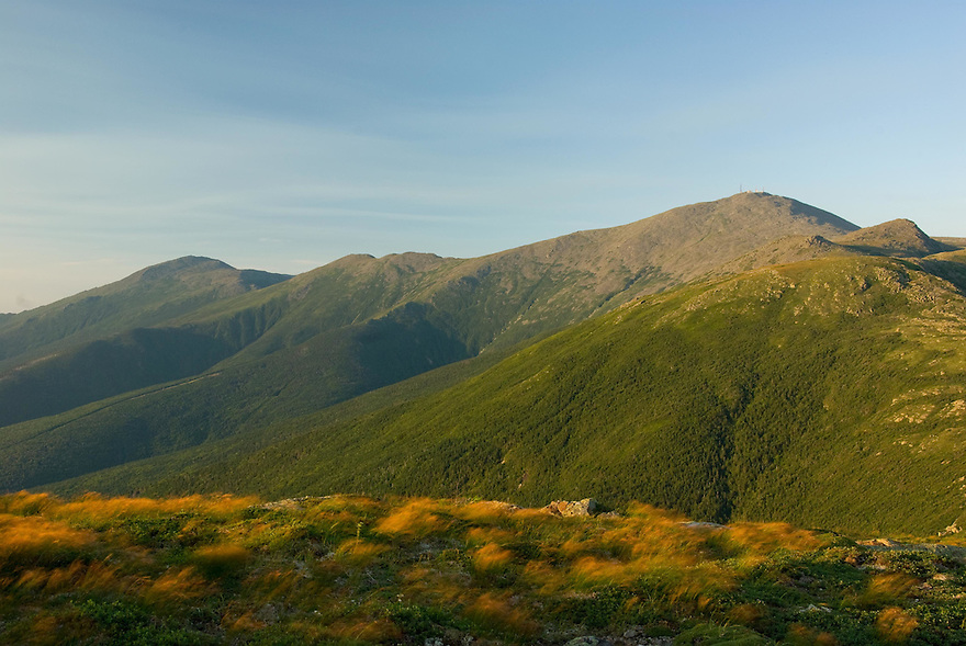 A stiff breeze stirs the alpine grass with the Presidential Range behind.