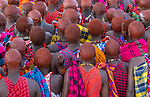 Kenya, Olare Motorogi Conservancy, young Maasai men gather for eunoto or coming-of-age ceremony
