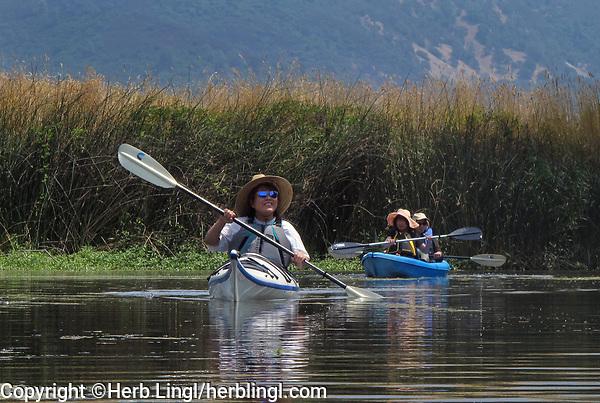 Kayaking in Rodman Slough, Lake County, California
