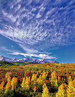 High clouds with fall colored aspens and San Juan Mountains. Uncompahgre National Forest, Colorado