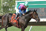 July 06, 2014: Itsmyluckyday with Paco Lopez win the Grade III Salvator Mile Stakes for 3-year olds & up, going 1 mile at Monmouth Park. Trainer: Edward Plesa, Jr. . Owner: Trilogy Stable and Laurie Plesa . Sue Kawczynski/ESW/CSM