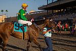 SEP 1,2014:Miss Serendipity,ridden by Brice Blanc,wins the Yellow Ribbon Handicap at Del Mar in Del Mar,CA. Kazushi Ishida/ESW/CSM