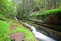 Flatbrook River, Delaware Water Gap, New Jersey