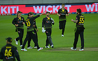 Australia celebrates keeper Matthew Wade catching Tim Southee off Kane Richardson during the 4th international men's T20 cricket match between the New Zealand Black Caps and Australia at Sky Stadium in Wellington, New Zealand on Friday, 5 March 2021. Photo: Dave Lintott / lintottphoto.co.nz