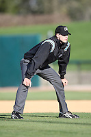 April 17 2010: Field umpire Nick Lentz at Elfstrom Stadium in Geneva, IL. Photo by: Chris Proctor/Four Seam Images