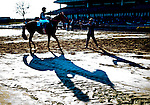 NEW YORK, NY - FEB 04: Scenes from around the track on Withers Stakes Day at Aqueduct Racetrack on February 4, 2017 in the Ozone Park neighborhood of New York, New York. (Photo by Scott Serio/Eclipse Sportswire/Getty Images)
