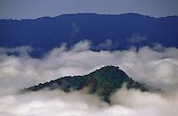 Parque Nacional Serra da Mocidade.<br /> Roraima Brasil<br /> Foto Marcello Lourenço