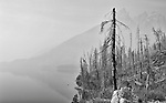 Smoky Day on Jenny Lake, Grand Teton National Park, Wyoming