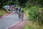 Cannondale, Arnhem Veenendaal Classic , UCI 1.1, Posbank, Rheden, The Netherlands, 22 August 2014, Photo by Thomas van Bracht / Peloton Photos