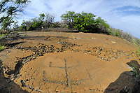Mauna Lani Puako Petroglyphs, South Kohala, The Big Island of Hawaii