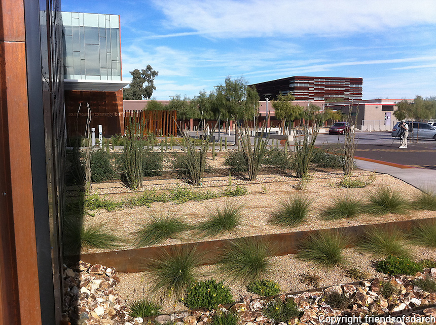 South Mountain Community College Library and Campus, Phoenix.AZ., 2012.<br /> The landscaping design features historic and culturally inspired contextual design. Sustainable low-water use plants, water harvesting and local material selection. Joy Lyndes, Landscape Architect.