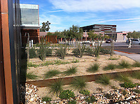South Mountain Community College Library and Campus, Phoenix.AZ., 2012.<br />