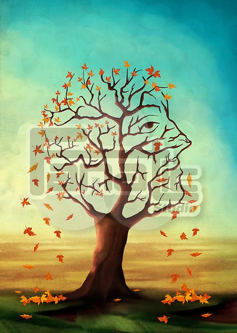 Illustrative image of maple tree shedding leaves representing Alzheimer's disease