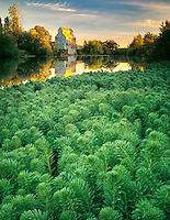 Kompf grain mill and Long Tom River.  Monroe, Oregon.