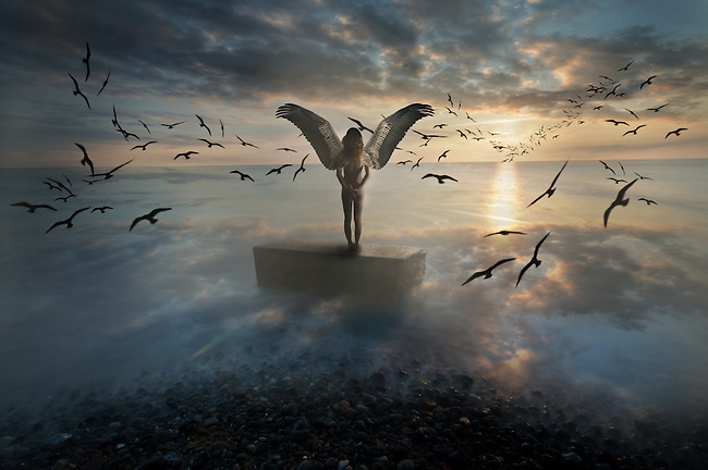 Birds of Freedom <br /> Photo manipulated art<br /> Modeled by Ayla Tarrant