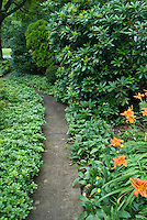 Shade garden path walkway amid pachysandra, hemerocallis, daylilies, convallaria lily of the valley, groundcovers, evergreens, shrubs, trees