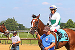 July 11, 2015: #9 Holiday Star, Edgar Prado up, wins the Cape Henlopen Stakes, one and 1/2 miles on the turf for three year olds and upwards at Delaware Park in Stanton DE. Trainer is Graham Motion; owner is Augustin Stable. Joan Fairman Kanes/ESW/CSM